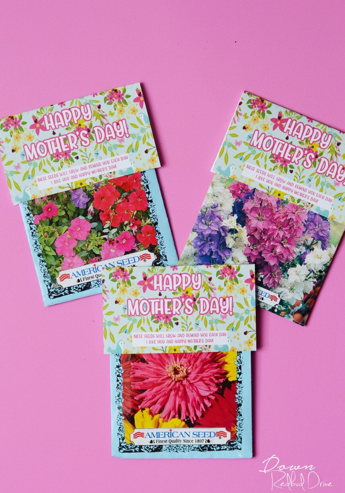 DIY Mother's Day Seed Gift
